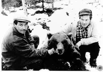 Björnjakt i Borgafjäll