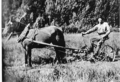 Oskar Sjökvist på bygdens första slåttermaskin, Borgafjäll